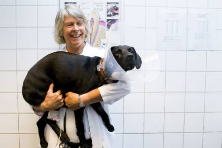 Veterinær Elise Lium ved Veterinærhøgskolen i Oslo tar hvert år imot et titalls hunder med huggormbitt. Her med hund som har fått god hjelp etter et møte med Norges eneste giftslange. Foto: NTB Scanpix