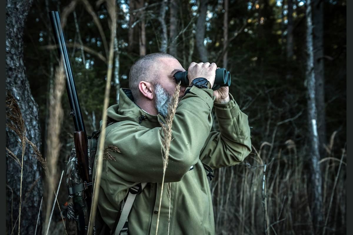 Juletiur'n i sikte:  Selv om løvet har falt, behøver du ikke se langt etter skogsfuglen.