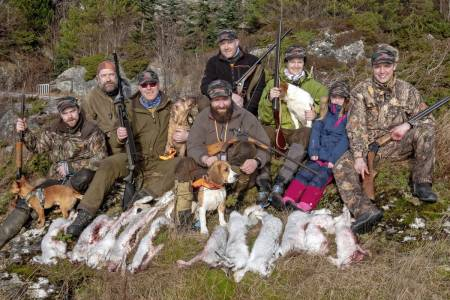 Rødliste: Flere organisasjoner på vernesida hevder at jegerne overrapporterer hvor mye harer de ser, for å få fortsette med jakta og unngå at haren blir freda.