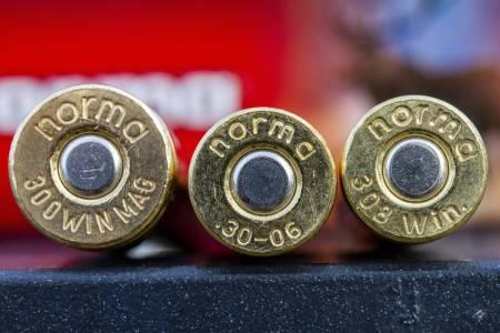 rifleammunisjon, .308 Winchester, 30-06 Springfield, .300 Winchester Magnum
