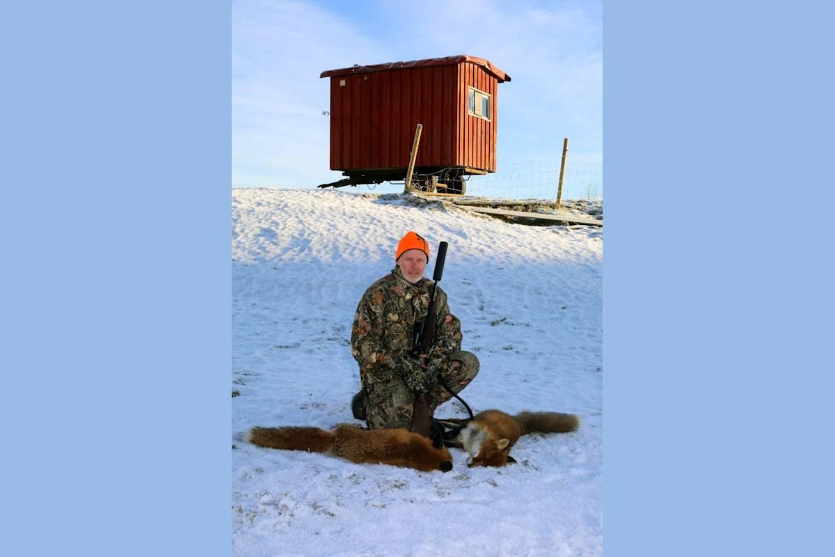 Vinterrev, jakt på rev på vinteren