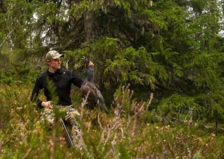 Skogsfugljakt i Sverige