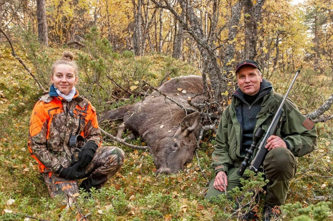 Elgjakt, elgfall, jaktstart, Murudalen, Gudbrandsdalen
