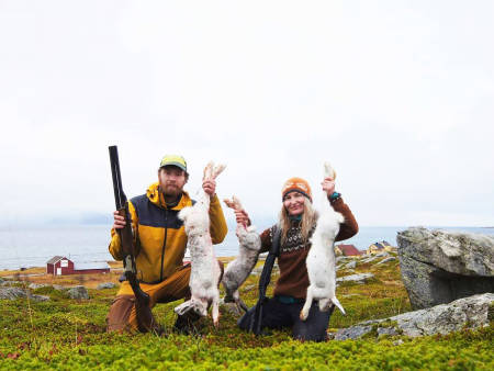 harejakt uten hund vannøya troms