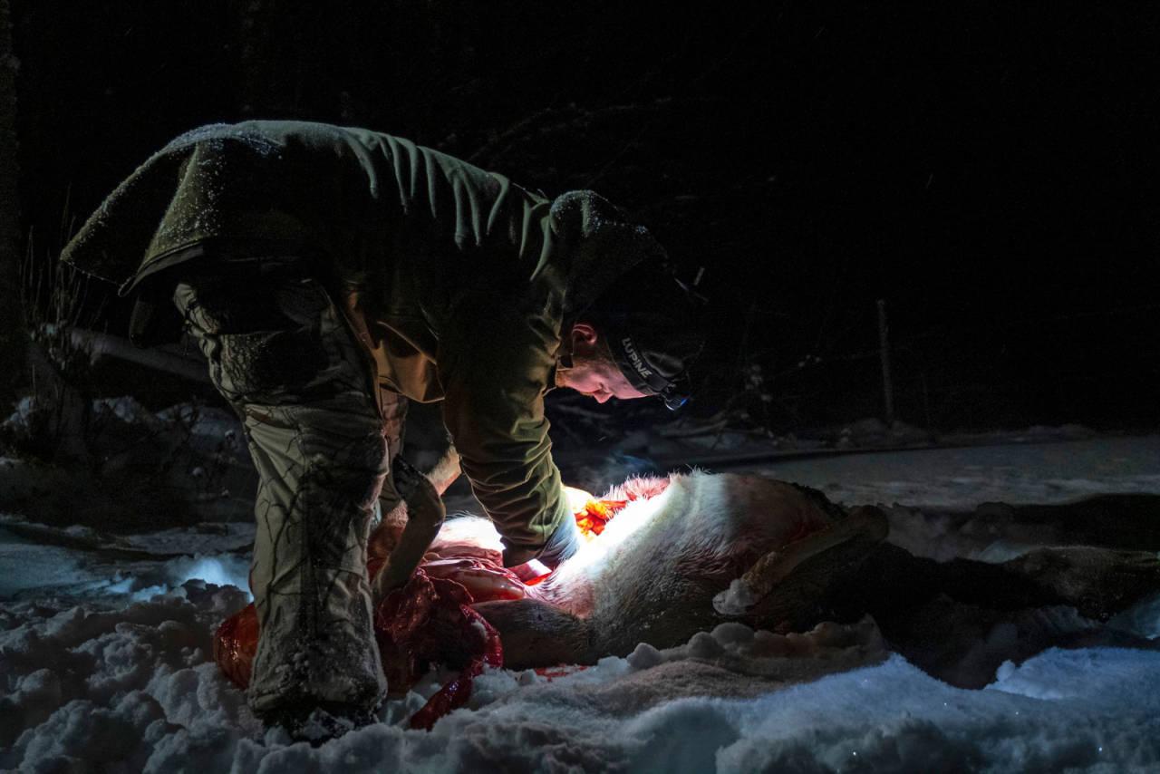 Lysere tider: Når jakta har vært vellykket, er det lov å tenne et lys i mørket. Men når kan du slå det på? (Ill.foto: Jo Stenersen)