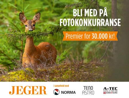 Rådyr rågeit rådyrgeit promo JEGER fotokonkurranse Foto: Åsgeir Størdal