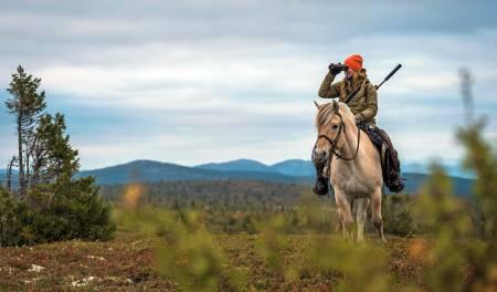 Jaktbilder, bilde til jakt, speide etter vilt