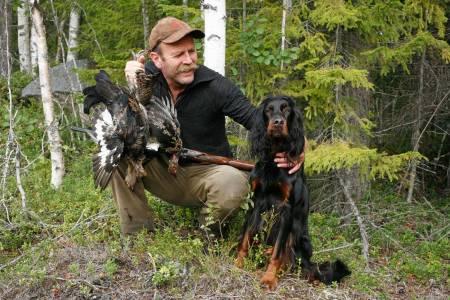 jakt med gammel hund, fuglejakt, eldre setter