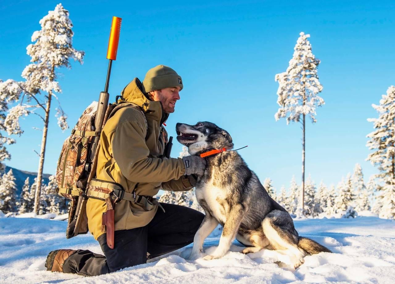 Lever med ulver: Ulvens tilbakekomst i jaktterrengene gjør at jegerne må ta nye forholdsregler.