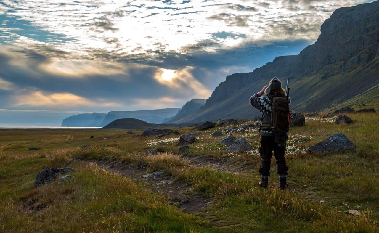 Åpne landskap: På den smale kransen av sandsletter mellom fjellklippene og havet, jakter Gunnar på fjellreven.