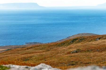 Skottland, jaktreise, hjortejakt
