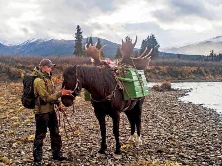 Jaktreise Nord-Amerika, jaktreise Alaska, bjørnejakt i Canada, elgjakt