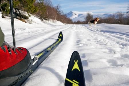 Løype her: Åsnes Mountain Race Skin 48 er god når vinterfjellet er på sitt mest fristende.