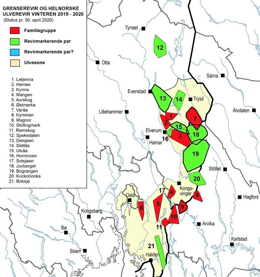 ulveflokker i Norge