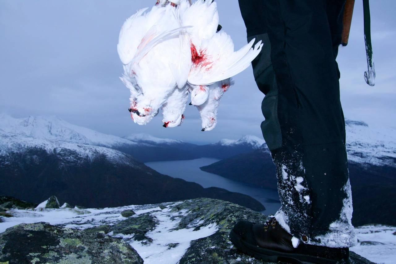 FREDEN I FJELLET: Når de fleste jegere pakker vekk børsa for sesongen, gleder vinterjegeren seg over å ha fjellet for seg selv.